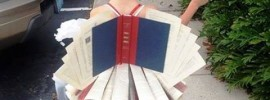 Little girl dressed as a book full of stories to be told